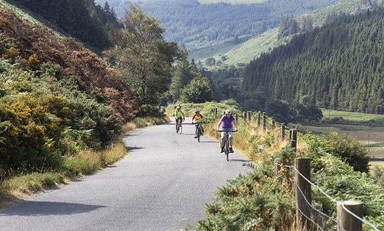 Enniskerry to Glendalough 30 miles / 48kms image 2